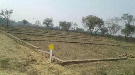 1500 sqft, Plot in Shine Paradise Garden Itaunja, Lucknow at Rs. 6.7500 Lacs