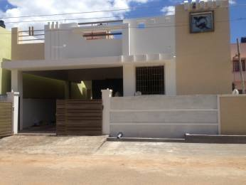 1176 sqft, 2 bhk IndependentHouse in Builder INDIVIDUAL HOUSE Periyanaickenpalayam, Coimbatore at Rs. 51.0000 Lacs