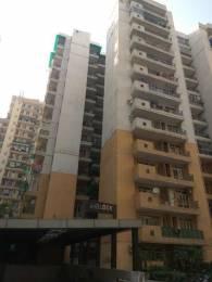 1685 sqft, 3 bhk Apartment in Builder Project Crossings Republik, Ghaziabad at Rs. 10000