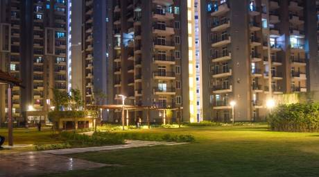 1425 sqft, 3 bhk Apartment in Paramount Floraville Sector 137, Noida at Rs. 75.0000 Lacs