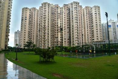 1270 sqft, 3 bhk Apartment in Paramount Floraville Sector 137, Noida at Rs. 65.0000 Lacs