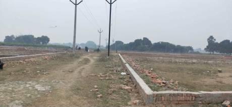 1000 sqft, Plot in Builder shikhar green awas yojna Jhalwa, Allahabad at Rs. 14.0000 Lacs