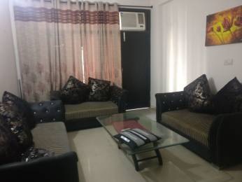 750 sqft, 1 bhk Apartment in Builder Apartment Peer Muchalla Road, Panchkula at Rs. 13000