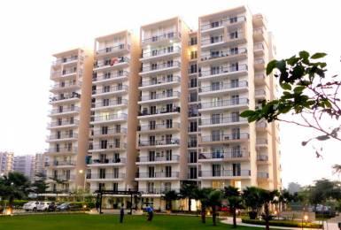 1582 sqft, 3 bhk Apartment in Builder highland park Zirakpur, Mohali at Rs. 15000