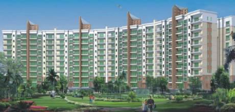 1780 sqft, 3 bhk Apartment in Salarpuria Sattva H And M Royal Kondhwa, Pune at Rs. 1.1000 Cr