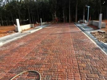 2933 sqft, Plot in TGH Classic Bulwark Village Devanahalli, Bangalore at Rs. 87.9900 Lacs