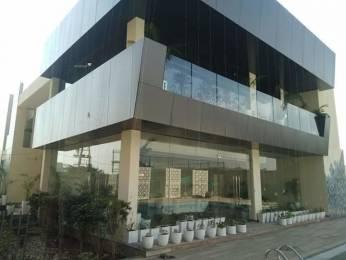 500 sqft, 1 bhk Apartment in Builder Commercial Showroom Shops SOHO Office Space in Sushma Pristine Zirakpur PR7 Airport Road, Zirakpur at Rs. 23.0000 Lacs