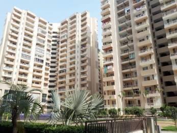 1150 sqft, 2 bhk Apartment in Ace Platinum Zeta 1 Zeta, Greater Noida at Rs. 39.0000 Lacs