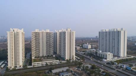 982 sqft, 2 bhk Apartment in Builder Project Hinjewadi, Pune at Rs. 48.1900 Lacs