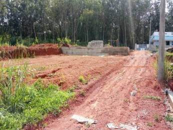 2610 sqft, Plot in Builder Project Pappanamcode, Trivandrum at Rs. 15.0000 Lacs