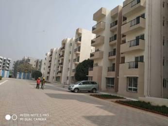 723 sqft, 1 bhk Apartment in VBHC VBHC Greenwoods Palghar, Mumbai at Rs. 17.0000 Lacs
