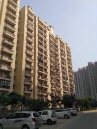 800 sqft, 2 bhk Apartment in Raison Olive Homes Sector 22 Bhiwadi, Bhiwadi at Rs. 16.0000 Lacs