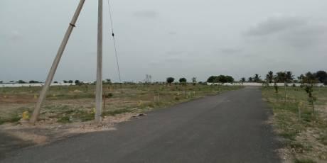1200 sqft, Plot in Builder Green fields Nandhavanam Neelambur, Coimbatore at Rs. 16.0000 Lacs