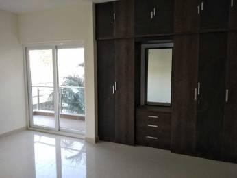 2700 sqft, 3 bhk Apartment in Builder Arafa Daffodil Frazer Town, Bangalore at Rs. 72000