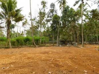 4302 sqft, Plot in Builder Project Vellayani Punnamoodu Road, Trivandrum at Rs. 6.0000 Lacs