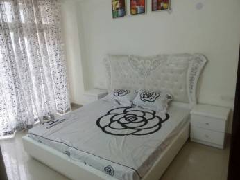 700 sqft, 1 bhk Apartment in Grah GAV Green View Blossom Aman Vihar, Dehradun at Rs. 30.0000 Lacs
