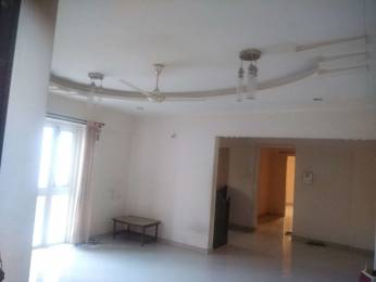 1250 sqft, 3 bhk Apartment in GK Roselands Rhythm Pimple Saudagar, Pune at Rs. 87.0000 Lacs