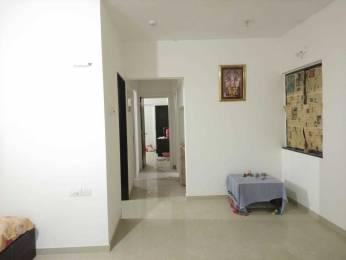 1251 sqft, 2 bhk Apartment in Kalpataru Harmony Wakad, Pune at Rs. 22000