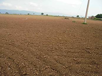 2504 sqft, Plot in Builder SOWMIYA LAND Kathirvedu, Chennai at Rs. 1.0016 Cr