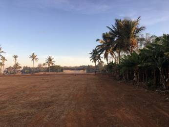 600 sqft, Plot in Builder Cleartitle Old Bangalore Harohalli, Bangalore at Rs. 11.0000 Lacs