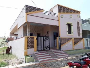 1000 sqft, 2 bhk IndependentHouse in Builder Project Jammu Narayanapuram Road, Vizianagaram at Rs. 33.0000 Lacs