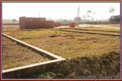 900 sqft, Plot in Builder Project Kadipur, Delhi at Rs. 3.5000 Lacs