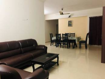 1500 sqft, 3 bhk Apartment in Olive Courtyard Kakkanad, Kochi at Rs. 70.0000 Lacs
