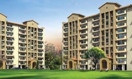 1450 sqft, 3 bhk BuilderFloor in Emaar Palm Hills Sector 77, Gurgaon at Rs. 91.0000 Lacs