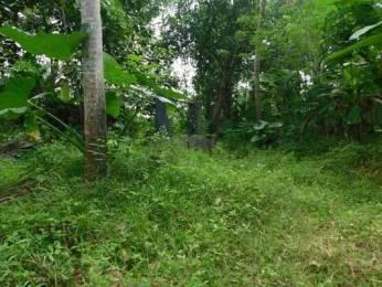 919 sqft, Plot in Builder Project Pothencode, Trivandrum at Rs. 57.0000 Lacs