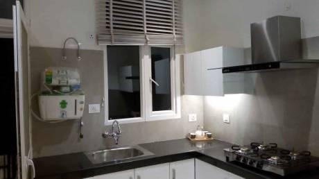 2560 sqft, 4 bhk Apartment in Barnala Green Lotus Avenue Patiala Highway, Zirakpur at Rs. 28000