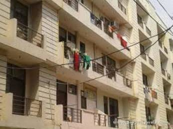 600 sqft, 1 bhk BuilderFloor in Globus Sai Upvan Sector 16C Noida Extension, Greater Noida at Rs. 14.0000 Lacs