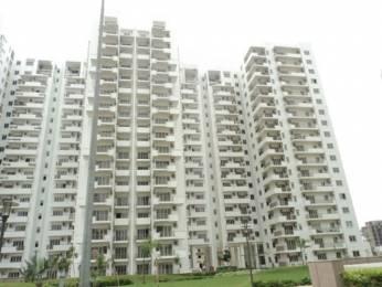 2125 sqft, 3 bhk Apartment in Emaar Premier Terraces Sector 66, Gurgaon at Rs. 1.9900 Cr