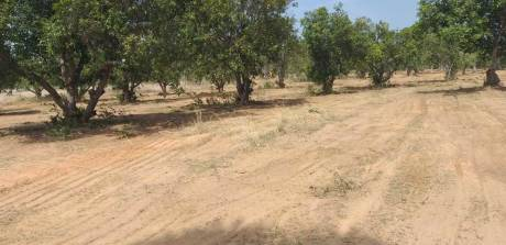 1800 sqft, Plot in Builder Sai Dharani Ravada, Vizianagaram at Rs. 14.0000 Lacs