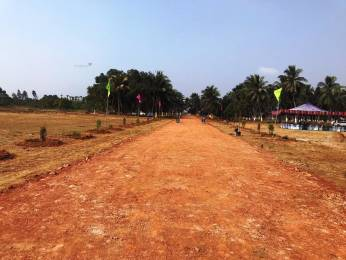 1800 sqft, Plot in Builder Red Carpet Bhogapuram, Visakhapatnam at Rs. 27.0000 Lacs
