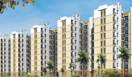 1300 sqft, 3 bhk Apartment in Avalon Rangoli Sector 65 Bhiwadi, Bhiwadi at Rs. 24.0000 Lacs