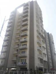 1800 sqft, 3 bhk Apartment in Builder Echo towers sector 125 Sector 125 Mohali, Mohali at Rs. 42.0000 Lacs