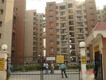 1550 sqft, 3 bhk Apartment in Builder dja apartment Sector 13 Dwarka, Delhi at Rs. 26000