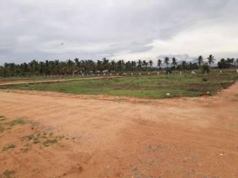 2400 sqft, Plot in Builder othakkalmandabampollachi main road Othakalmandapam, Coimbatore at Rs. 2.5000 Lacs