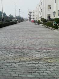 1350 sqft, 2 bhk Apartment in Builder Project Vrindavan, Mathura at Rs. 60.0000 Lacs
