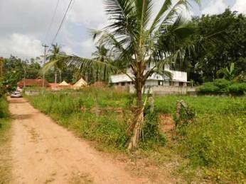 3915 sqft, Plot in Builder Project Mannanthala, Trivandrum at Rs. 63.0000 Lacs