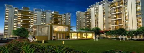 1085 sqft, 2 bhk Apartment in Atria Grande Project A Handewadi, Pune at Rs. 43.5000 Lacs