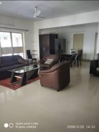 1100 sqft, 3 bhk Apartment in Rahul Siddharth Nagar Aundh, Pune at Rs. 24500