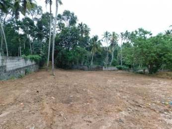 180 sqft, Plot in Builder Project Balaramapuram, Trivandrum at Rs. 12.0000 Lacs