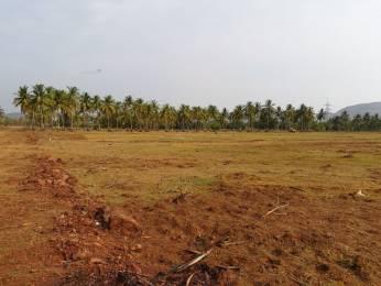 1800 sqft, Plot in Builder courtyard Sarika Village Road, Vizianagaram at Rs. 15.0000 Lacs