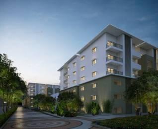 1600 sqft, 3 bhk Apartment in Sagara The Address Madhurawada, Visakhapatnam at Rs. 56.0000 Lacs