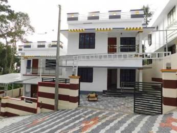 1650 sqft, 3 bhk IndependentHouse in Builder Project ThirumalaThrikkannapuram Road, Trivandrum at Rs. 60.0000 Lacs