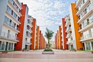 1257 sqft, 2 bhk Apartment in Krishvi Gavakshi Bellandur, Bangalore at Rs. 30000