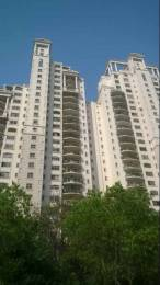 1777 sqft, 3 bhk Apartment in DLF The Regency Park Phase 2 DLF CITY PHASE IV, Gurgaon at Rs. 1.8500 Cr
