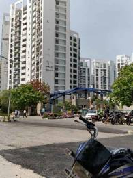 2590 sqft, 3 bhk Apartment in Unitech The Close Sector 50, Gurgaon at Rs. 55000