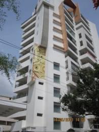 3761 sqft, 3 bhk Apartment in Esskaybee Development Hiro Tower Sadashiva Nagar, Bangalore at Rs. 5.3000 Cr